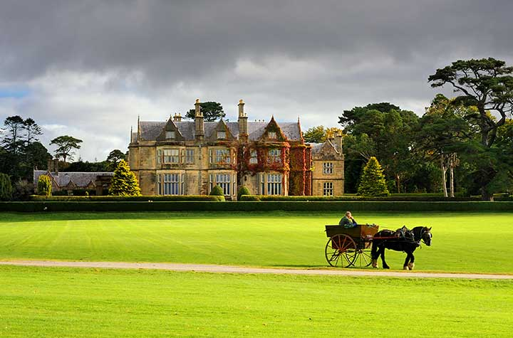 MuckRoss-House-Horse-and-Carriage